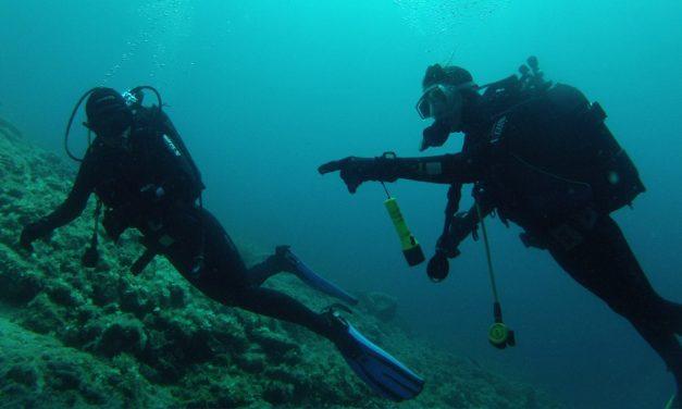 Rekreativno ronjenje